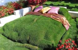 Правильный уход за искусственным газоном