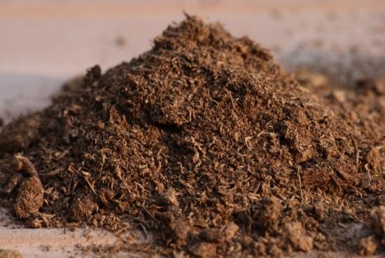 Почему нужно добавлять в почву торф