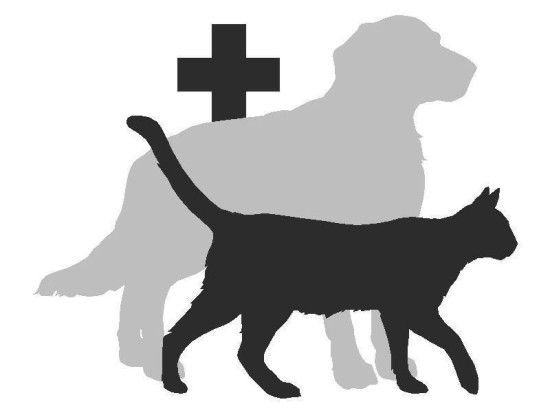 1363596592_drawing_of_cat_and_dog_rot_180_rot_180